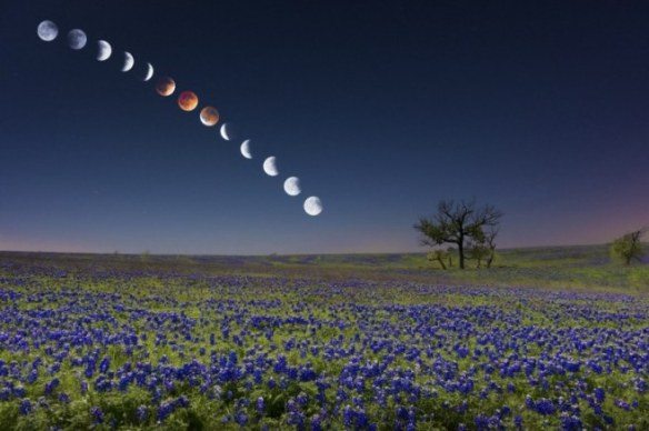 4-14-Eclipse-over-Bluebonnets-Mike-Mezeul